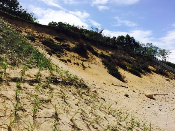 Army Corps' proposal for sand dunes in newest plan brings questions about cost, feasibility