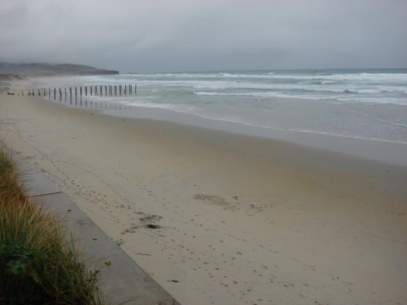 st-clair-beach-nz-1