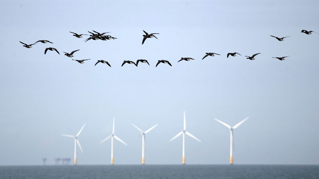 Will floating turbines usher in a new wave of offshore wind?