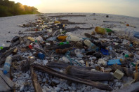 Plastic in the North Atlantic has tripled since the 1960s