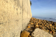 The Trouble with Seawalls