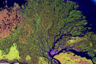 Sudden shifts in the course of a river on a delta may be predicted