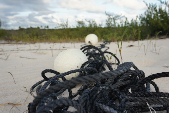 Greenpeace report reveals ghost gear contribution to plastic pollution