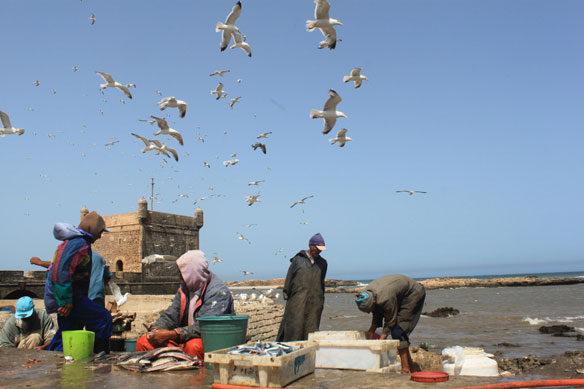 fishermen-morocco