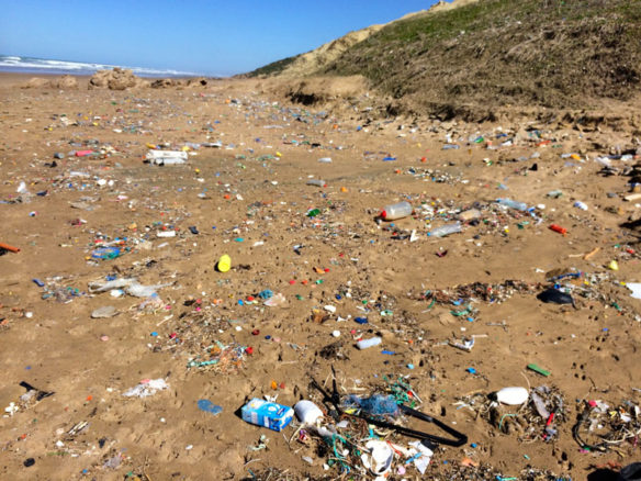 plastic-pollution-coastalcare