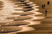 Beach cusps: shoreline symmetry; By Gary Griggs