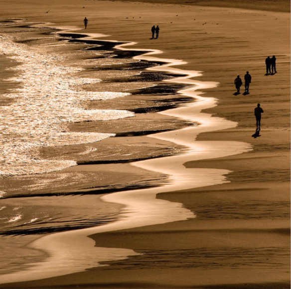 Beach cusps: shoreline symmetry; By Gary Griggs
