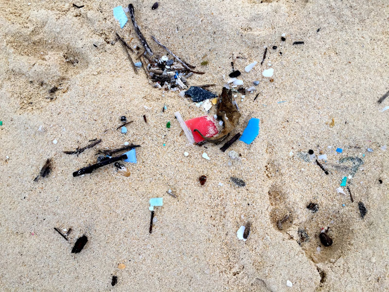 Plastic Island: How our throwaway culture is turning paradise into a graveyard