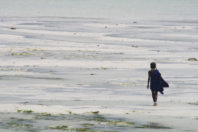 Indian Ocean Dipole spells flood danger for East Africa