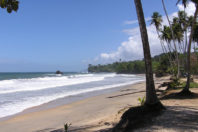 Warning from IDB expert: Trinidad is shrinking