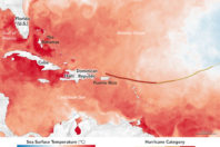 Hurricane Irma leaves 'unprecedented' destruction in the Caribbean