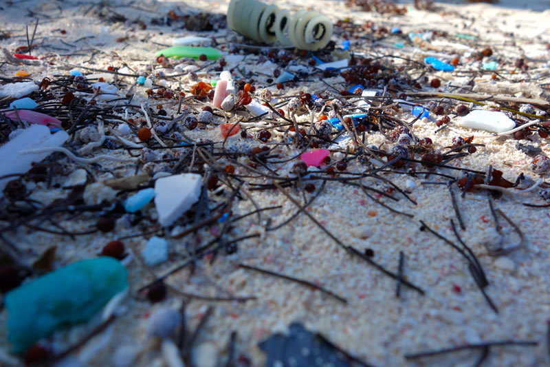 Microplastics Have Invaded The Deep Ocean — And The Food Chain
