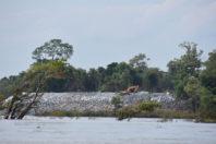 The Mekong, Dammed to Die