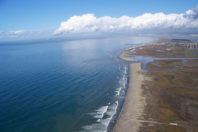 Sea level rise threatens to wipe out West Coast wetlands