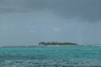 Innovative restoration of coral reefs helps protect Caribbean islands
