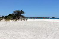 This Sardinian Town May Ban Towels to Save Popular Beach