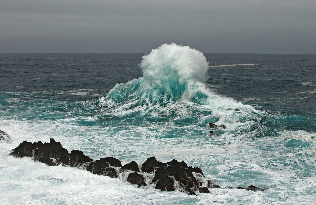 Madeira, the island of eternal springtime, and Porto Moniz lava pools