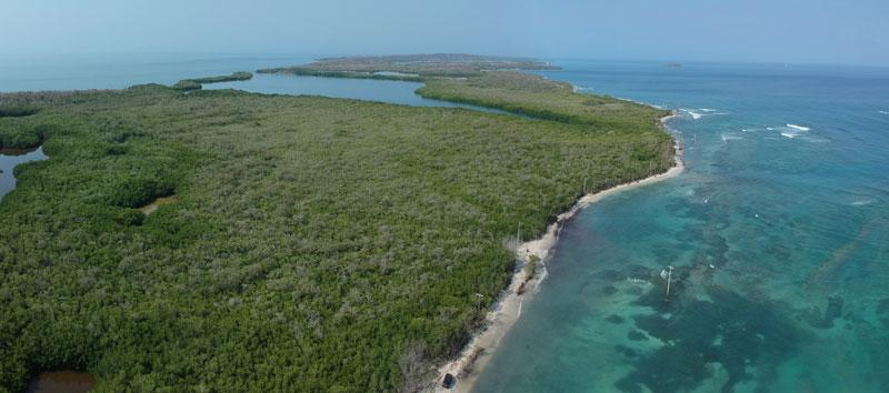 Management Strategies for Coastal Erosion Processes; By Nelson Rangel-Buitrago