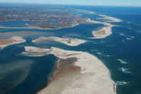 Global Study of World's Beaches Shows Threat to Protected Areas