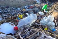 Coca-Cola is world's biggest plastics polluter – again