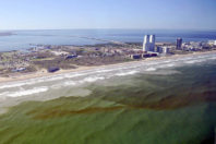 Ocean circulation likely to blame for severity of 2018 red tide around Florida