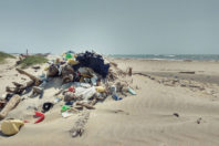 Marine Litter: Solutions for a Major Environmental Problem; By Williams, A.T. and Rangel-Buitrago