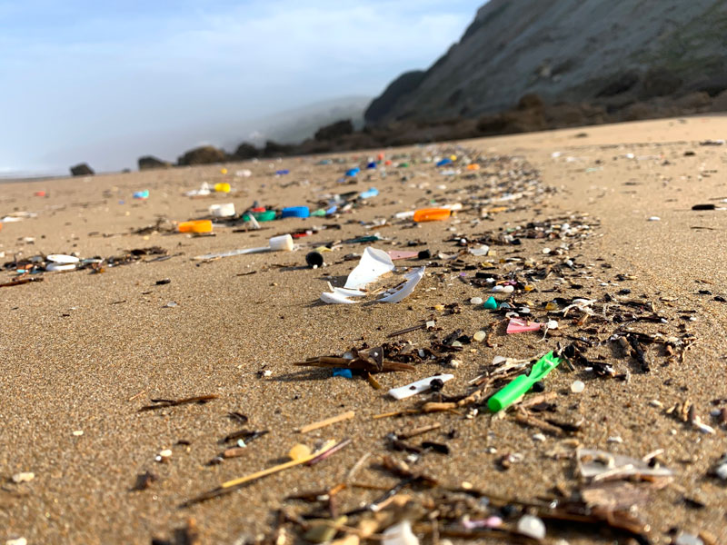 Scientists find highest ever level of microplastics on seafloor