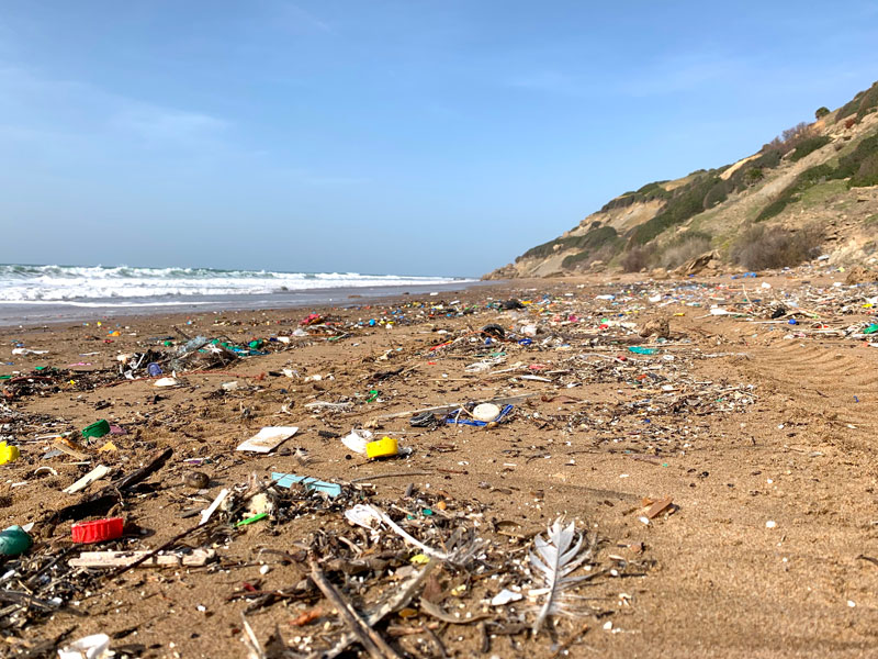 Critical questions over disease risks from ocean plastic