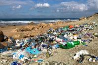 The Rising Trend of Zero Waste Lifestyles