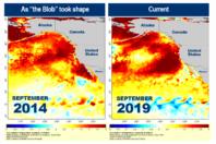 "New Marine Heatwave Emerges off West Coast, Resembles ""the Blob"""