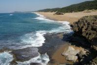 Coasts in Peril? A Shoreline Health Perspective; By Andrew Cooper & Derek Jackson