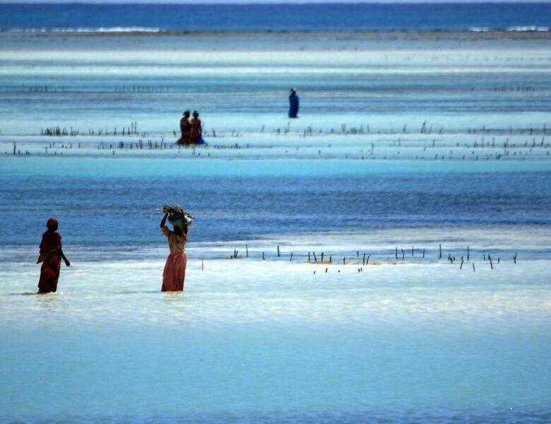 Stunning Photos of Zanzibar's Beaches and Architecture; Aline Coquelle