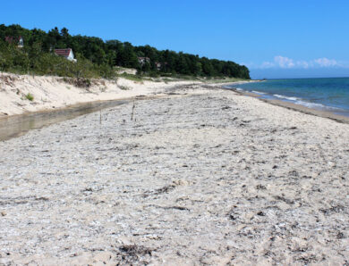 Beaver Island Michigan, 2016 – 2020: Beach Perspectives; By William J. Neal