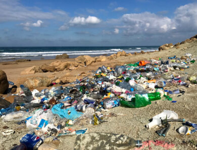 Groundbreaking study finds 13.3 quadrillion plastic fibers in California's environment